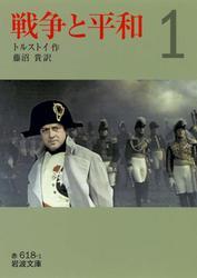 戦争と平和 全6巻セット