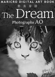 野良猫詩 The Dream