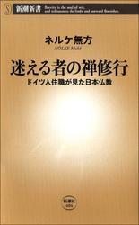 迷える者の禅修行―ドイツ人住職が見た日本仏教―