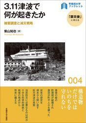 3.11津波で何が起きたか:被害調査と減災戦略