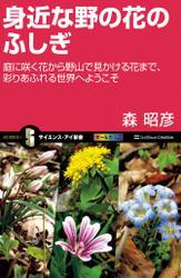 身近な野の花のふしぎ 庭に咲く花から野山で見かける花まで、彩りあふれる世界へようこそ