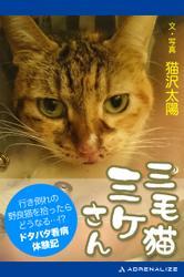 三毛猫ミケさん