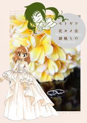 セトギワ花ヨメ