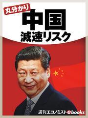 丸分かり中国減速リスク