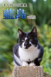 まちねこ写真集・藍島 vol.2