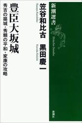 豊臣大坂城―秀吉の築城・秀頼の平和・家康の攻略―