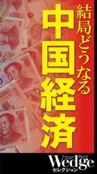 結局どうなる 中国経済 (Wedgeセレクション No.48)