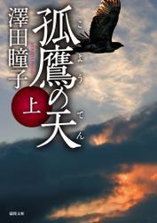 孤鷹(こよう)の天 上