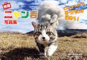 旅猫ニャン吉写真集 どんニャときでも笑う門には福来る!