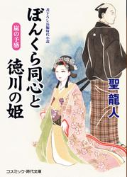 ぼんくら同心と徳川の姫 嵐の予感