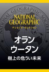 オランウータン (ナショジオ・セレクション) 樹上の危うい未来