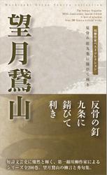 川柳作家ベストコレクション 望月鵞山