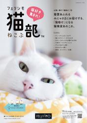 猫部&YOU+MORE!(2019年8月号)