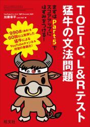 TOEIC L&Rテスト 猛牛の文法問題