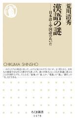 漢語の謎 ──日本語と中国語のあいだ