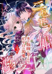 ニセモノ姫と溺愛王子~氷の仮面に隠された10年目の渇愛~【分冊版】3