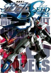 機動戦士ガンダムSEEDモデル Vol.2