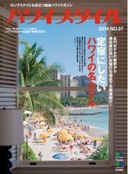 ハワイスタイル (No.37)