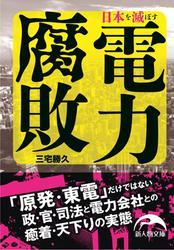 日本を滅ぼす電力腐敗