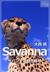 Savanna ~サバンナの野生動物~