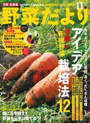 野菜だより (11月号)
