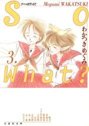So What? 3巻
