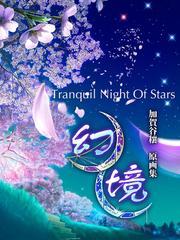 幻境・Tranquil Night Of Stars 加賀谷穰 原画集