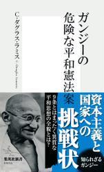 ガンジーの危険な平和憲法案