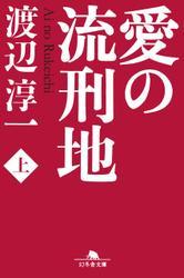 愛の流刑地(上)