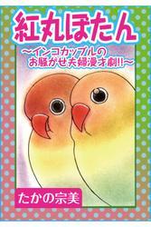 紅丸ぼたん~インコカップルのお騒がせ夫婦漫才劇!!~