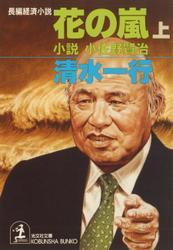 花の嵐(上・下合冊版)~小説 小佐野賢治~