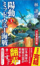 陽動ミッドウェー海戦(3) ガ島奪還作戦