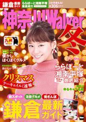 神奈川Walker 16→17冬