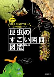 昆虫のすごい瞬間図鑑