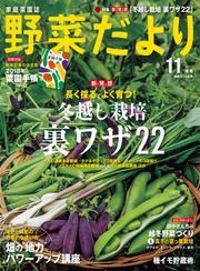 野菜だより (2017年11月号)
