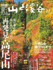 山と溪谷 (通巻991号)