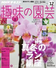 NHK 趣味の園芸 (2017年12月号)