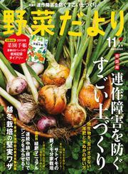 野菜だより (2018年11月号)