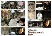 Ooiwa-san Nissekiji temple Guide