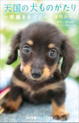 小学館ジュニア文庫 天国の犬ものがたり~笑顔をあげに~