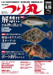つり丸 (2020年6/15号)