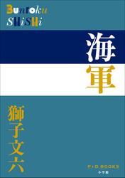 P+D BOOKS 海軍