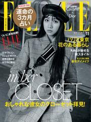 エル・ジャポン(ELLE JAPON) (2020年11月号)
