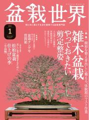 盆栽世界 (2021年1月号)