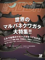 BE-KUWA(ビークワ) (78)