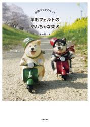 本物よりかわいい 羊毛フェルトのやんちゃな柴犬