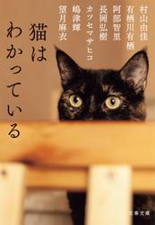 猫はわかっている
