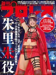 週刊プロレス (2021年10/13号)